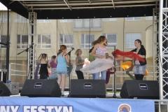 festyn2011-16
